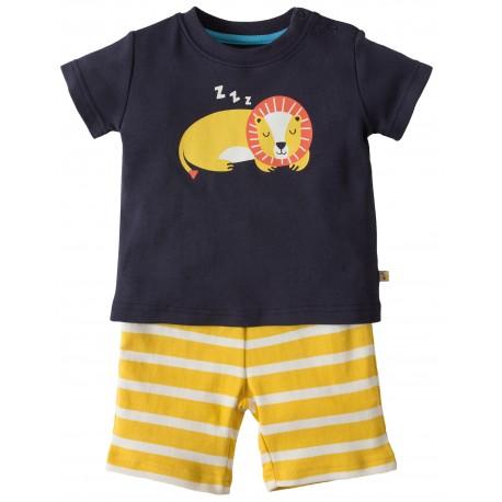 Pyjama Lion